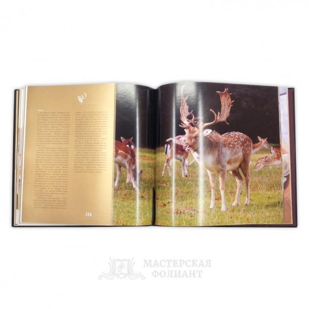 Книга «Кухня охотника», в раскрытом виде